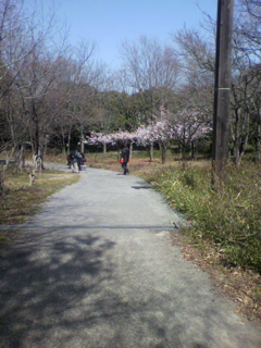 image-20120322222852.png