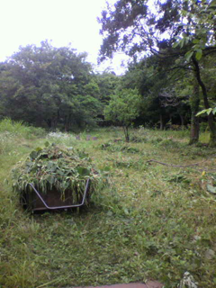 image-20120621221100.png
